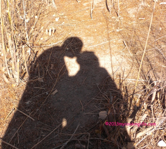 Shadow-kissing on a lazy Sunday at the bosque.