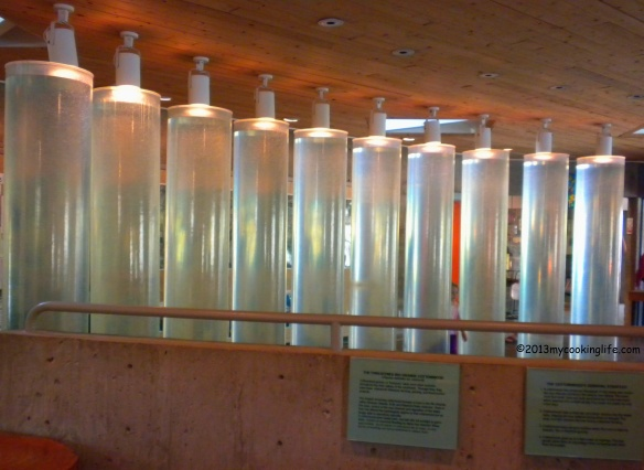 Speaking of solor, these big columns of water inside the Nature Center Educational Building create passive heat for this building in winter time when the sun shines on them.